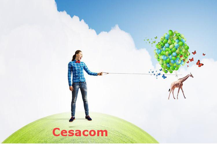 Nos conseils pour vous préparer efficacement aux épreuves d'admission du concours d'entrée de CESACOM en première année
