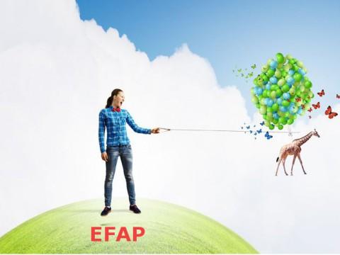 Bacheliers, nos conseils pour vous préparer efficacement aux épreuves d'admission du concours d'entrée de l'EFAP